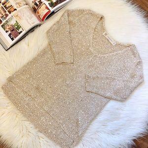 Zara | Sparkle V Neck 3/4 Sleeve Sweater